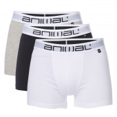 3 PACK BOXER SHORT
